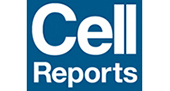 Article: International Multisite Study of Human-induced Pluripotent Stem Cell-derived Cardiomyocytes for Drug Proarrhythmic Potential Assessment